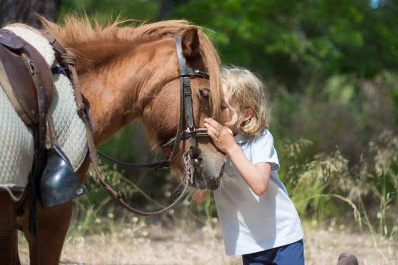 poney club enfant - stage ucpa