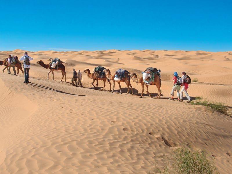 2017_Trek_Sahara_depuis_Tunisie