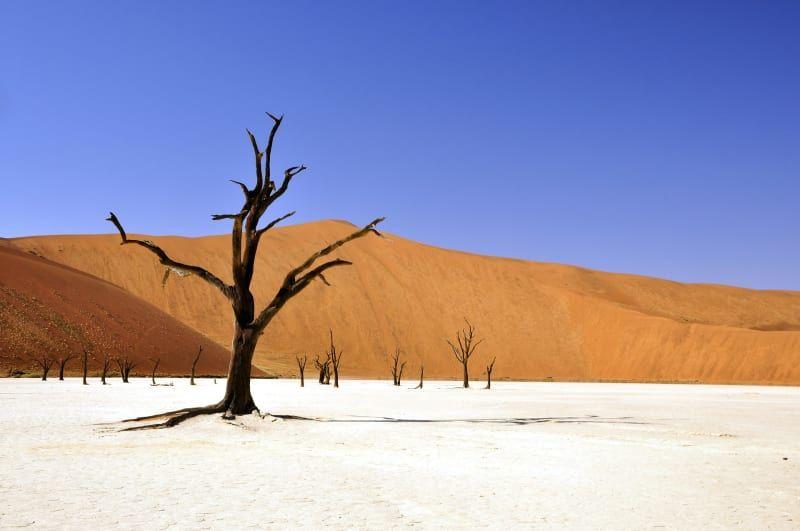 Le_d%C3%A9sert_de_Namib_pixabay