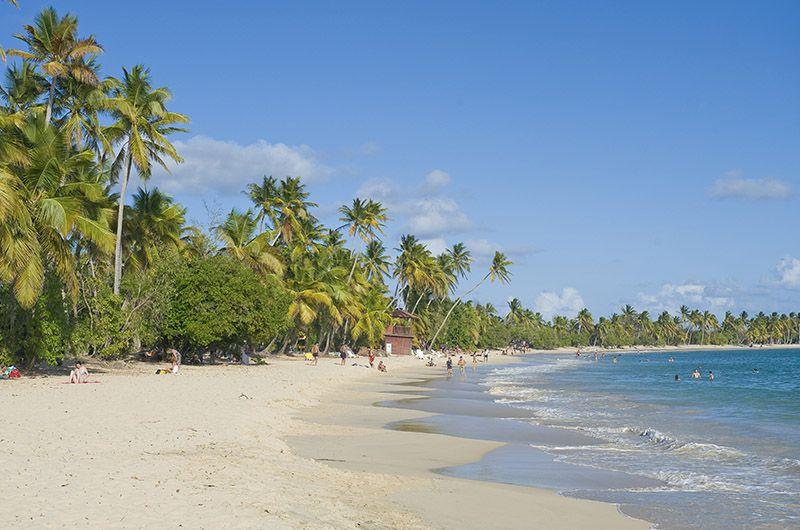 Plage Salines lieu incontournable Martinique
